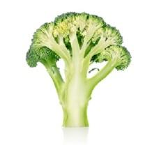 broccolo.jpg